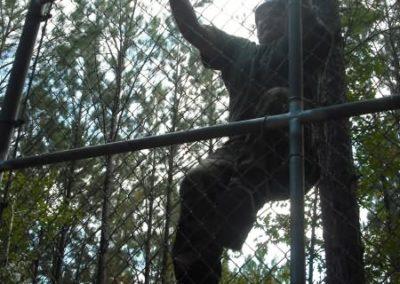 swat comp 2008 290